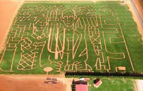 Pumpkin Patches Near Dallas Tx 2015 by North Texas Corn Mazes Fall Festivals