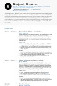 Director Of Online Marketing Resume Example