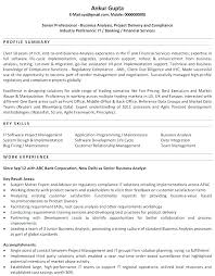 Entry Level Business Analyst Resume Systems Samples