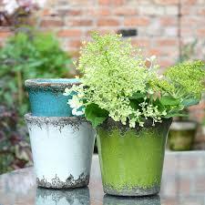 Rustic Plant Pots Brights