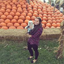 Rombachs Pumpkin Patch Hours by 85 Best Scc Bloggers Images On Pinterest Blog Students And Colleges