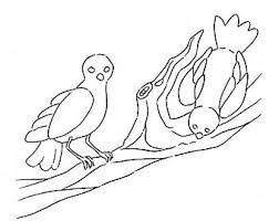 Generic Birds Coloring Page