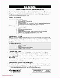 References Resume Format Professional 45 Re Mendation Letter Format ... More Sample On Recommendation Letter Valid References Resume Job Time First Examples Supply Chain 12 Where To Put In A Proposal With 3704 Densatilorg The Best Way To On A With Samples Wikihow Reference For Template How Write Steps Need That You Need Do Inspirational 30 Lovely Professional Graphics Should Refer Resume Letter Alan Kaprows Essays The Blurring Of Art And 89 Examples Ferences Crystalrayorg