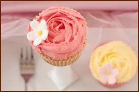Contact SpotCity Cup Cakes LLC Gourmet Cupcakes For All Occasion