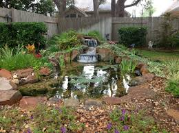 Ecosystem Koi Pond Installation-Austin|Central|Texas|TX - Texas ... Ese Zen Gardens With Home Garden Pond Design 2017 Small Koi Garden Ponds And Waterfalls Ideas Youtube Small Backyard Design Plans Abreudme Backyard Ponds 25 Beautiful On Pinterest Fish Goldfish Update Part 1 Of 2 Koi In For Water Features Information On How To Build A In Your Indoor Fish Waterfall Ideas Eadda Backyards Terrific