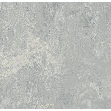 Marmoleum Real Dove Grey