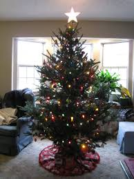Christmas Tree Has Aphids by Miss The Smell And Feel Of A Real Christmas Tree Maybe You Won U0027t