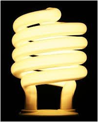 compact fluorescent light bulbs by wal mart ecofriend
