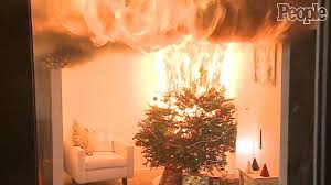Are Christmas Trees Poisonous To Dogs by Utah Couple Dies After Christmas Tree Caught On Fire