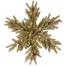 Christmas Tree Types by Outdoor Christmas Decorations