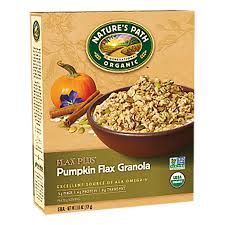 Organic Pumpkin Seeds Online by 11 Healthy Pumpkin Products Vermints Inc