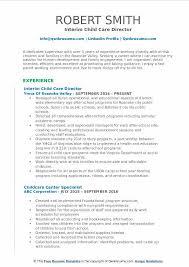 Interim Child Care Director Resume Example