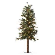 Hayneedle Christmas Trees by Alpine Christmas Tree Christmas Lights Decoration