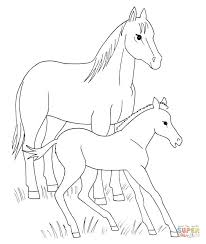 Click The Horse And Foal Coloring Pages