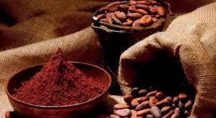 Types Of Pumpkins Grown In Uganda by 7 Reasons To Consider Cocoa Farming In Uganda U2013 Uganda Investment