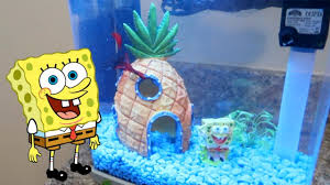 Spongebob Aquarium Decorating Kit by Spongebob Fish Tank Decor Youtube