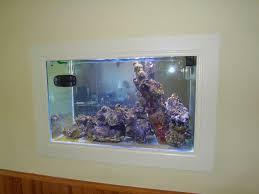 aquarium dans le mur aquarium de notre fils sylvain