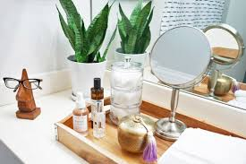 Best Plant For Bathroom by Bathroom Apartment Therapy