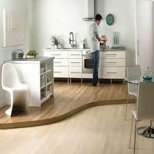Best Kitchen Flooring Ideas by Modern Kitchen Flooring Ideas 7995