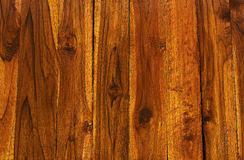 Teak Wood Texture Pattern Background Show Stock Image