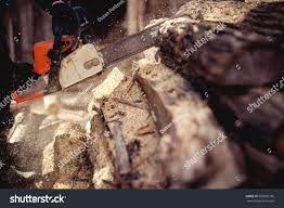 Cutting Wood Chainsaw Backyard Lumberjack Work Stock Photo ... Detail Of Young Man Chopping Wood In His Backyard Stock Photo 6158 Nw Lumberjack Rd Riverdale Mi 48877 Estimate And Home Only Best Budget Tree Service Changs Changes Our Is One Loading Wood Logs To Wheelbarrow Video Landscape Lumjacklawncare Twitter Amazoncom Camp Chef Overthefire Grill With Sturdy The Urban Sturgeon County Bon Accord Gibbons Bash Themed Cookies Pinterest Inside The Quest To Become Greatest World Cadian Show Epcot Youtube