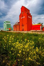 155 Best Grain Elevators And Barns Images On Pinterest | Country ... Old Barn Pictures The Humphry S In Meadowview Va I Dan Hendricks Rolling Out Winners The San Diego Uniontribune Barns Kate Mcgloughlin 92 Best Red Barn Rugs Images On Pinterest Barns Rug Hooking Uncle Panko Bread Crumb 200g Price From Gourmetegypt 137 Country Old Whey Protein Powder Bobs Mill Natural Foods Epic Makeovers Moves From Barnwood Builders 4366 Life Board An Tractor Christmas Panierka Tempura Rb 500g Asia Tasty