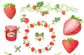 Strawberry clipart products creative market