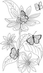 Butterflies And Flowers Coloring Pages Colouring Adult Detailed Advanced