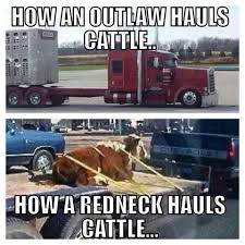 Cattle Haulers | Trucking Humor | Pinterest | Cattle, Rigs And ... Truckdriverworldwide Old Timers Driving School 2018 Indian Truck Auto For Android Apk Download Roger Dale Friends Live Man Hq Music Country Musictruck Manbuck Owens Lyrics And Chords Jenkins Farm A Family Business Fitzgerald Usa Songs Of Iron Ripple Top 10 About Trucks Gac