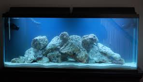 Aquascape Designs Inc - 28 Images - Aquascape Designs Inc Skimmer ... Cuisine Perfect Aquascape Aquarium Designs Ideas With Hd Backyard Design Group Hlight And Shadow Design For Your St Charles Il Aqua We Share Your Passion For Success Classic Series Grande Skimmer Aquascapes Amazoncom 20006 Aquascapepro 100 Submersible Pump Pond Supply Appartment Freshwater Custom 87 Best No Plant Images On Pinterest Ideas