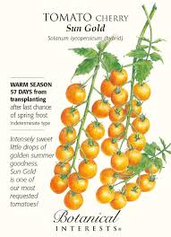 Amazon.com : Sun Gold Cherry Tomato - 10 Seeds - Very Sweet : Tomato ... Sweet Tomatoes The Boston Lunch Lady Amazoncom Drunken 2 Pack Grocery Gourmet Food Hot Dog Of A Food Truck Pays Off For Monroe Fatherson Duo Michigan 6 Varties To Try A Healthier Chesas Gluten Tootin Free Truck Chicago Trucks Celebrity Tomato Prized Flavor And Large Fruit Kitchensurfing Blog Yellow Stock Photos Images Alamy Quebec Citys 5 Favorite Keep Exploring Oath Pizza Roaming Hunger