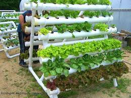 DIY HORTA Google Search planter ideas Pinterest