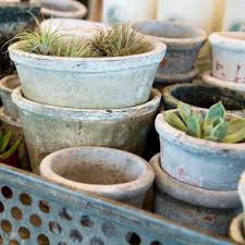 Shades Of Blue Gray Rustic White And Local Plant Life Airplants Moss Vintage Inspired Terracotta Pots
