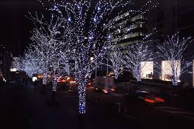 Type Of Christmas Tree Lights by Bright Beautiful Different Types Of Outdoor Christmas Lights