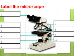 Microscopes Labelling of light microscopes and difference between