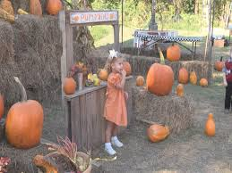 Pumpkin Patch Pittsburgh 2015 by Pumpkin Patch Encourages Family Bonding Wkrg