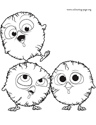 Bird Coloring Pages Free Marvelous