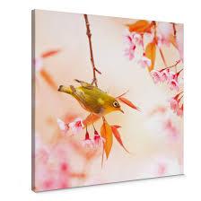 leinwandbild vogelgezwitscher in der kirschblüte quadratisch