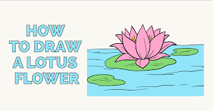 How to draw a lotus flower featured image