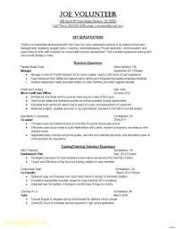 T Mobile Resume Example Plus Examples For Sales Directors Lovely Best Managing Director