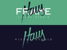 Haus Visual Studio LogoDesign GraphicDesign Inspiration Design ColorPrint