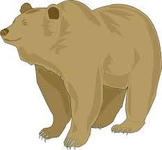 Brown Bear Clipart California 3103132