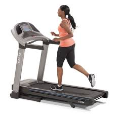 Lifespan Tr1200 Dt5 Treadmill Desk by Bay Area Fitness Equipment Exercise Home Gyms Bay Area San