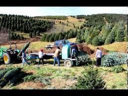 Christmas Tree Baler For Sale