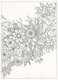 JOHANNA BASFORDArt Therapy Antistress Coloring Secret Gardens