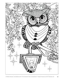 Creative Haven Owls Coloring Book Pdf Tropical World Owl Awesome Fox Chapel Publishing Harry Potter Post