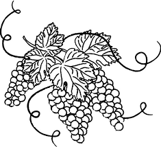 Grapes With Leaves Coloring Pages