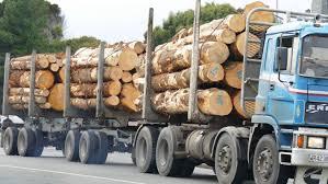 100 Logging Truck Accident Truck Crashes On Highway Near Kawakawa In Northland Stuff