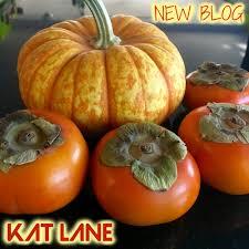 Shock Top Pumpkin Wheat Expiration Date by Blog U2014 Kat Lane Lives Here