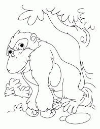 Fourth Of July Coloring Pages Page
